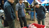 Park rangers confiscate wildlife meat at the Thu Khoi eatery in the town of Da Lat, Lam Dong Province