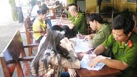 Bride suppliers for Chinese men nabbed in Vietnam