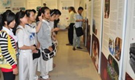 Indochina's heritage on display at Da Nang museum