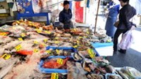 Various kinds of fish are displayed at a fish shop in Tokyo on April 5, 2011. Japan started dumping 11,500 tons of low-level radioactive water at sea to free up storage space at its crippled Fukushima
