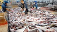 EU pledges $2.5 million to Vietnam in support for seafood industry