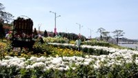 An area of Da Lat Flower Festival 2011 near Xuan Huong lake.