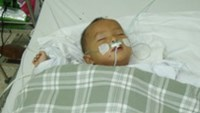One-year-old Dang Tan Dat at Ho Chi Minh City's Children Hospital 2 where he is being treated for bee stings. His three-year-old sister succumbed to more critical stings suffered as she tried to p