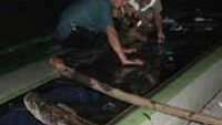 Locals smashed open a bus' windows to rescue trapped passengers when the vehicle tumbled into a roadside ditch in central Vietnam.