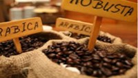 Vietnam coffee premium shrinks as London futures prices advance