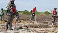 US awards contracts to clear dioxin in Vietnam