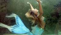 There are no mermaids: US government