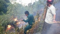 Locals help extinguish a forest fire that lasted 16 hours in the central city of Da Nang