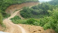 A road built by a foreign investor leading to a reforestation project in Lang Son Province