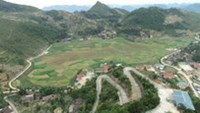 Vietnam's northern mountainous province of Ha Giang has been chosen for a pilot project to grow quinoa