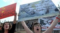 South African protesters hold signs during a demonstration outside the Chinese embassy in Pretoria last year. Photo: AFP