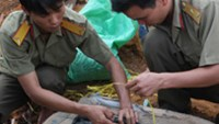 Soldiers from the Kon Tum Province Military Unit collect the remains of a Vietnamese war martyr found during construction of a house in the eponymous town.