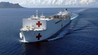 US, Japanese aid ships arrive in Vietnam