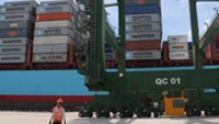 Market share of Vietnam shipping lines sinking steadily: report