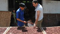 The passion of the cacao