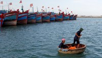 Fisherman Nguyen Hap (R) paddles a boat to transport Bui Van Minh (L) and his son Bui Van Chau to Minh's damaged fishing boat at a quay of Ly Son port, inVietnam's central Quang Ngai province, July 1, 2014. Photo credit: Reuters