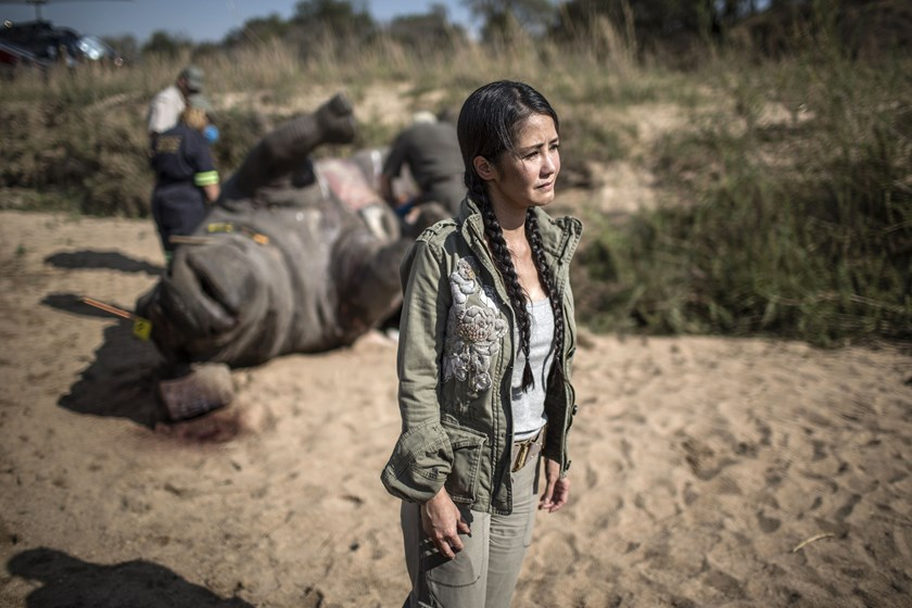 Vietnamese pop diva Hong Nhung, fights back tears as she stands near the carcass of a decomposing white rhino on the banks of a river in the Kruger National Park as rangers are seen at work on September 12, 2014. Photo credit: AFP