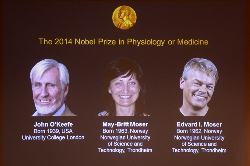 A screen presents the winners of the Nobel Prize in Medicine, U.S.-British scientist John O'Keefe and Norwegian husband and wife Edvard Moser and May-Britt Moser. Photo credit: AFP