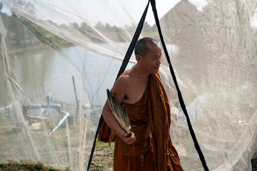 Phra Buddha Issara walks inside his garden during an interview with Reuters at Wat Or Noi in Nakhon Pathom February 27, 2015.  Photo credit: Reuters