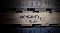 Trade wars: Monsanto's return to Vietnam