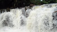 Two students missing from waterfall in Southern Vietnam