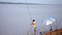 Senior cop electrocuted while fishing in southern Vietnam