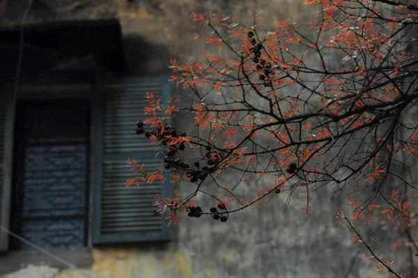 Beyond the chaos, a Hanoi of silence and tranquility
