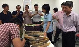Hanoi customs officers seizes 100 kg of ivory, rhino horns in record haul