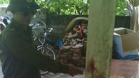 Doctor allegedly knives nurses, attempts to kill himself in northern Vietnam