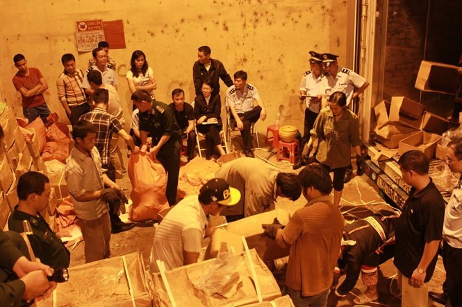 Vietnamese authorities inspect 860 kilos of ivory and two tons of pangolin scales at Hoanh Mo Border Gate in Quang Ninh Province on November 23, 2015. Photo provided by customs