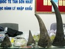 Vietnam to destroy smuggled wildlife products