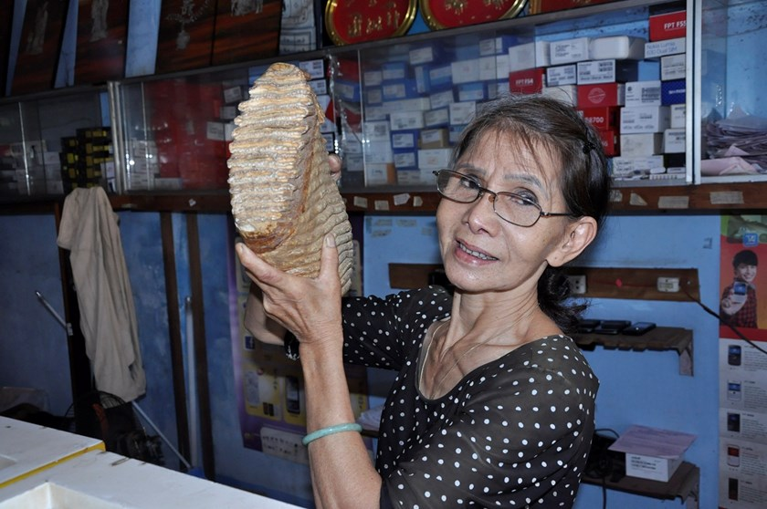 Nguyen Thi Hoai Diem, 60, poses with the mysterious fossil at her house in the southern province of Binh Phuoc. Photo: Phuoc Hiep