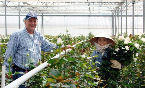 Thomas Hooft and a worker on a flower farm of Dalat Hasfarm in Da Lat, Vietnam. Photo: Lam Vien