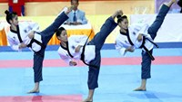 Vietnamese Taekwondo martial artists will compete at the World Martial Arts Council Games 2015 in Thailand. Photo: Kha Hoa