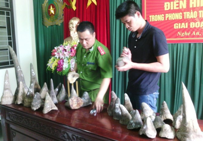 The massive haul of rhino horns seized by Nghe An police on May 9. Photo credit: Tuoi Tre