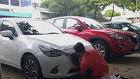 Vietnam's auto imports hit 5-year high, top $3.8 billion