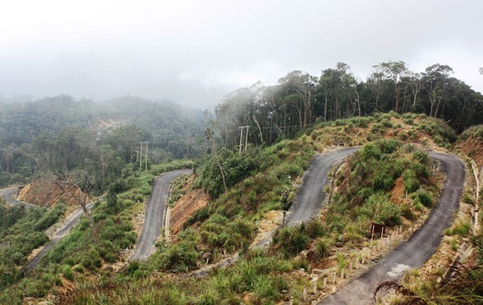 Hillside roads in the Hon Ba Nature Reserve in Khanh Hoa Province. Photo: Nguyen Chung