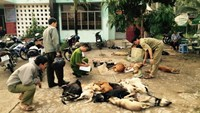 Police check the poisoned dogs seized from three motorbike drivers on September 19 in Ben Tre Province. Photo credit: Tuoi Tre