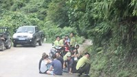 Foreign tourists wait by the roadside after park rangers stopped their bus for parking at an unallowed place in Phong Nha Ke Bang National Park. Photo credit: Tien Phong