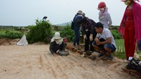 Tourists visit a garlic farm on Quang Ngai's Ly Son Islands. Photo: Phuong Uy
