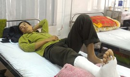 11 park rangers attacked by poachers in central Vietnam