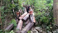 A photo from a Facebook page allegedly belongs to an illegal logger in Gia Lai Province. Photo credit: Tuoi Tre