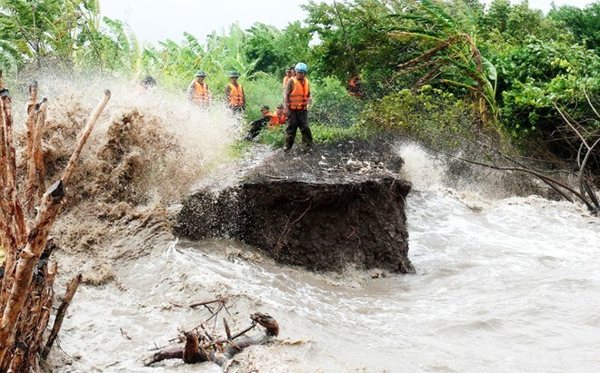 An area affected by erosion in southern Vietnam. Photo credit: Viet Truong/Zing