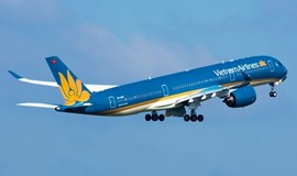 Vietnam Airlines plane makes emergency landing after hitting bird