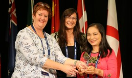 Vietnamese neonatal nurse wins int'l award