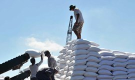 Vietnam to auction sugar import quotas for 85,000 tons