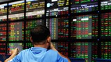 An investor monitors share prices on an electronic board at a local securities trading floor in Hanoi on August 25, 2015. Photo: AFP