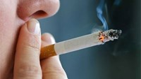 Weekly roundup: Smoking deaths, flight delays, expat problems