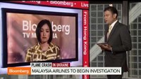 Malaysia Airlines to begin investigation into crash
