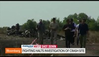 Fighting halts investigation of MH17 crash site
